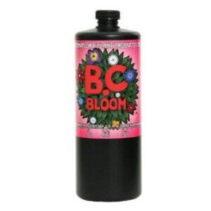 bcbloom
