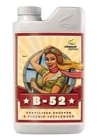 B-52_1L_Bottle_New_Web