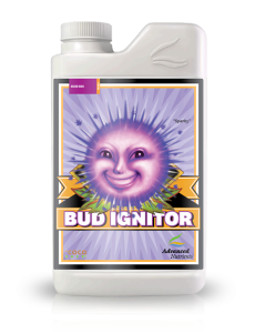 Bud-Ignitor