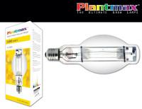PX_MS1000_bulb_box