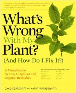 whats-wrong-with-my-plant